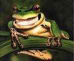 Be a happy positive frog